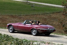 Afbeelding van Jaguar E Type