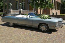 Afbeelding van Cadillac El Dorado